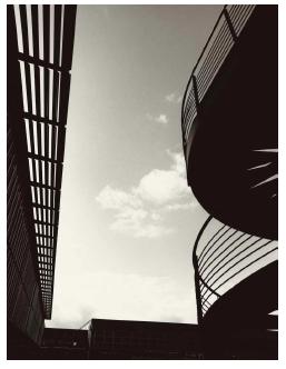 Bolofo roof 40