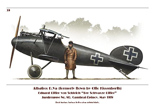 Albatros Fighter 1