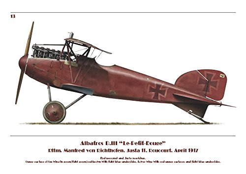 Albatros Fighter Udet