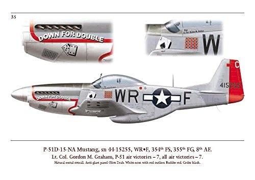 P-51D Aces down