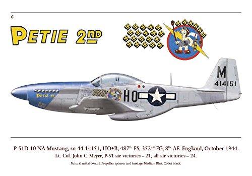 P-51D Aces petie