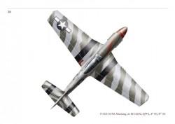 P-51D Aces30